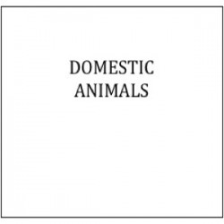 DOMESTICanimalsbox